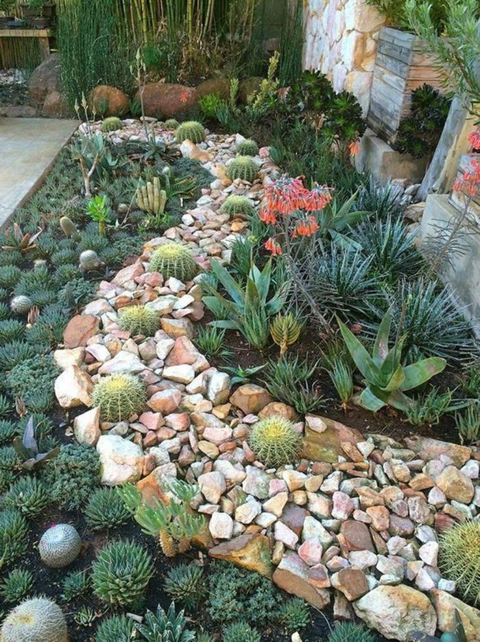 plantes grasses et cactus, design de pierres ondulant, dalle exterieur pour jardin, joli aménagement paysager