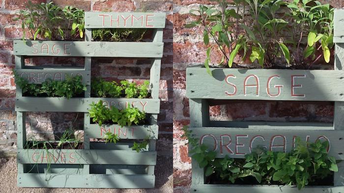 idée comment cultiver et planter des herbes fraiches dans une palette, habillage mur vegetal exterieur maison