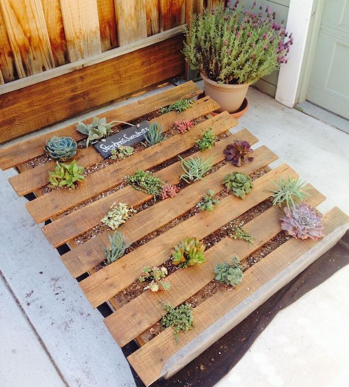 plantes grasses exterieur dans une palette avec terreau posé sur un pan de géotextile, comment amenager son exterieur