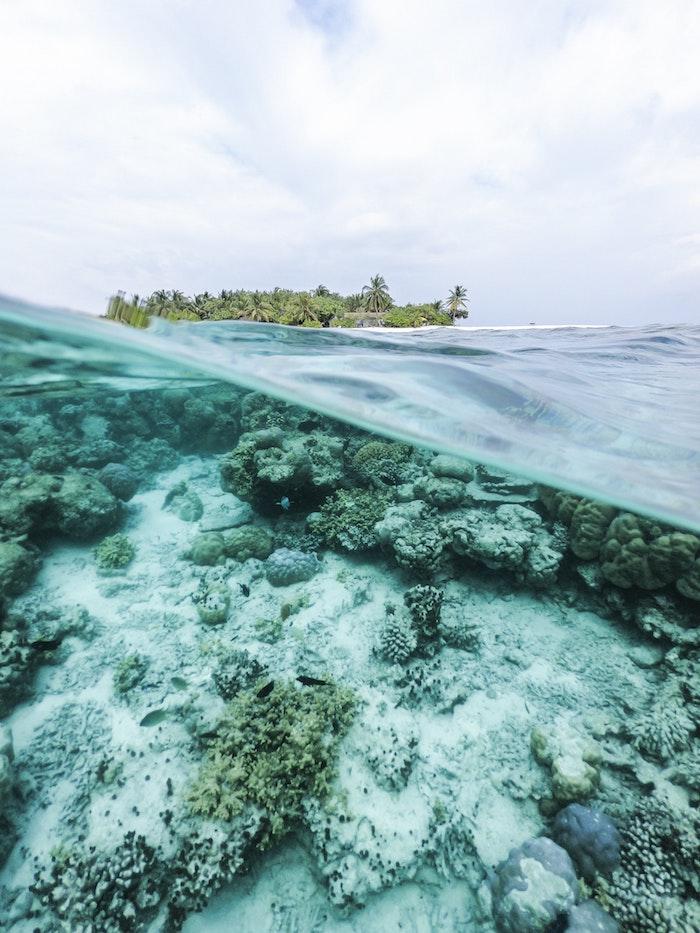Ile paradesque paysage, fond d'écran original paysage image à choisir pour fond d'ecran vue de l'océan