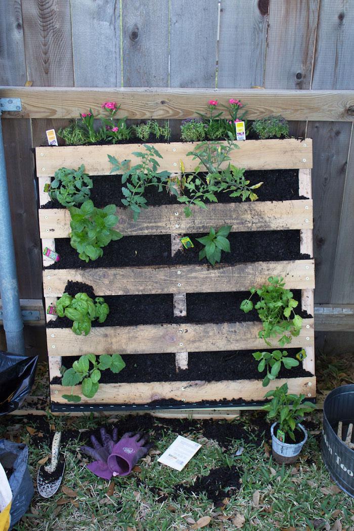 fabriquer carré potager et placer celui-ci à l'extérieur, idée que planter dans le jardin, légumes maisons dans potager
