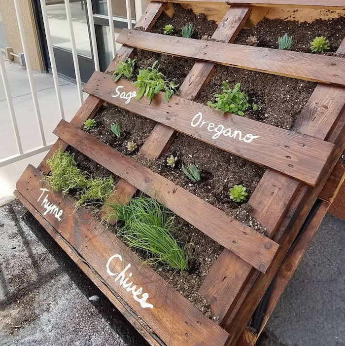 comment cultiver des herbes fraiches soi meme dans une palette de bois avec du terreau et des plantes