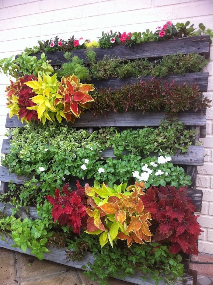 exemple de mur vegetal exterieur à plusieurs plantes dans les interstices d une palette, deco exterieure originale