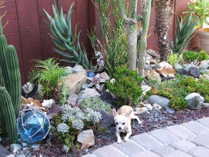 plantes grasses exterieur, petit chien blanc, lampe boule décorative, grands cactus, pierres