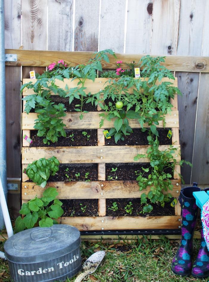 planer des tomates et autres cultures dans une palette placée à la verticale, exemple de potager vertical diy