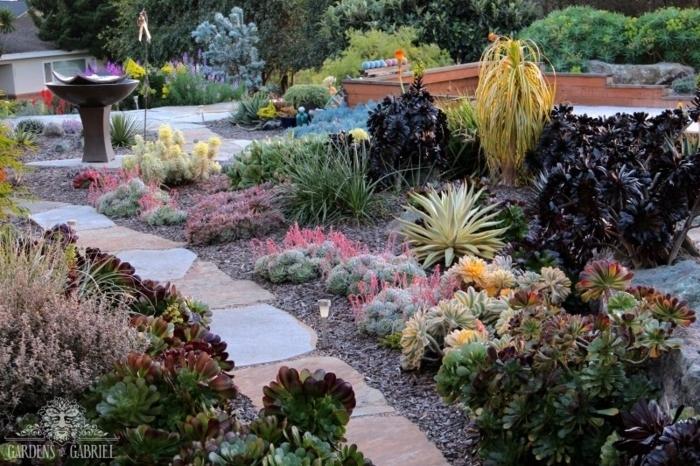allée de jardin, plantes grasses d'extérieur, gravier, allée en dalles, cailloux, élever des plantes grasses