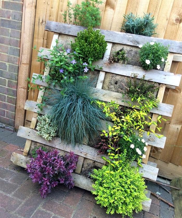 plantes vertes d extérieur dans une palette de bois, modele de jardinière verticale de bois pour deco exterieur