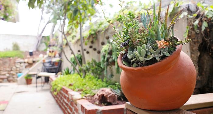 déco de jardin pot, mini jardin de succulentes en pot, muret de briques rouges, grand mur