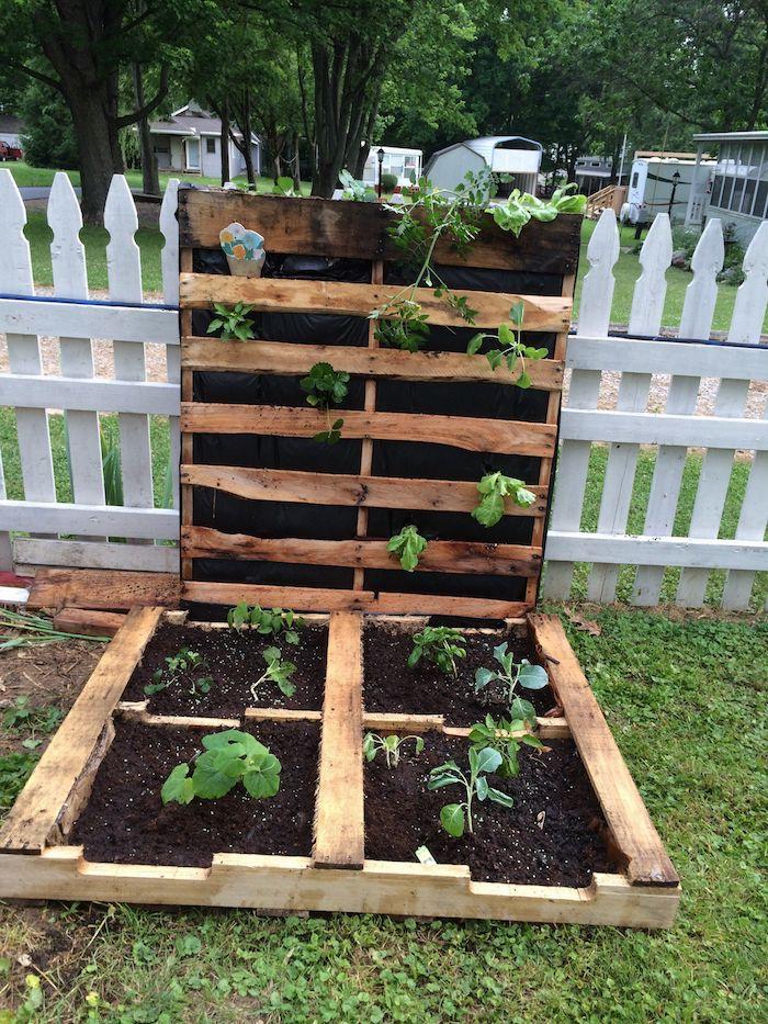 palette horizontale et vertical pour créer un potager à légumes, idée comment cultiver ses légumes soi meme