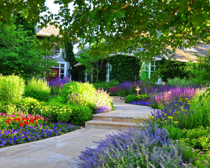 allée de jardin dallage, parterres de fleurs différentes, grand arbre, maison, verdure rampante
