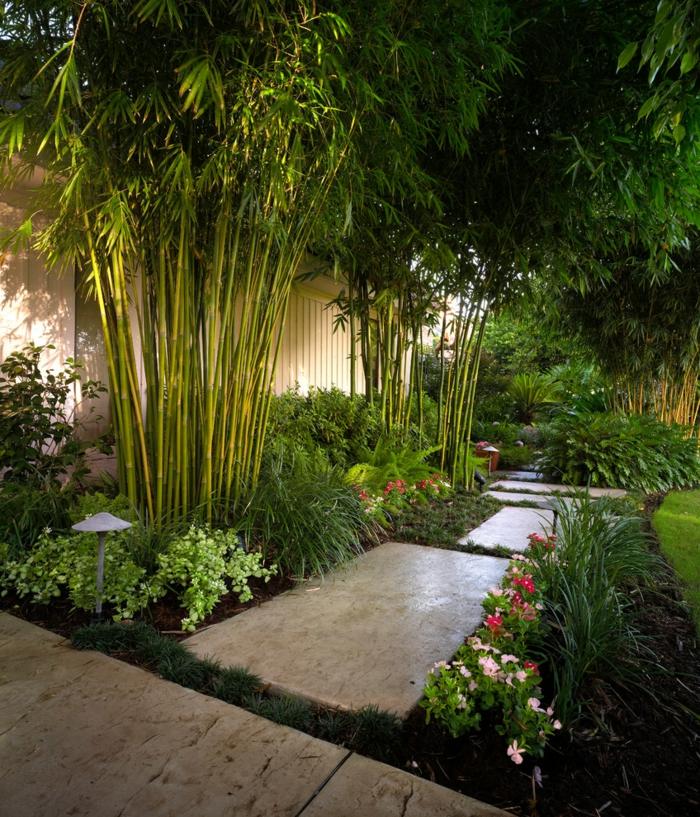 bambous, jolie allée de jardin, plantes fleuries, gazon tondu, decoration jardin minimaliste
