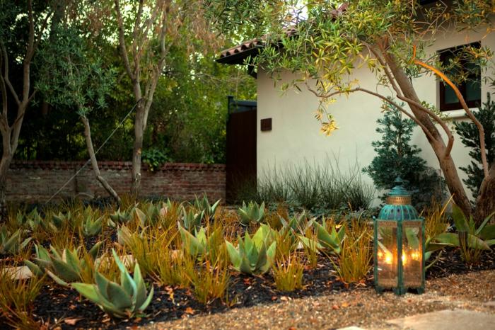 aménager un joli jardin paysager, lanterne décorative en verre, cadre bleu, parterre de plantes architecturales