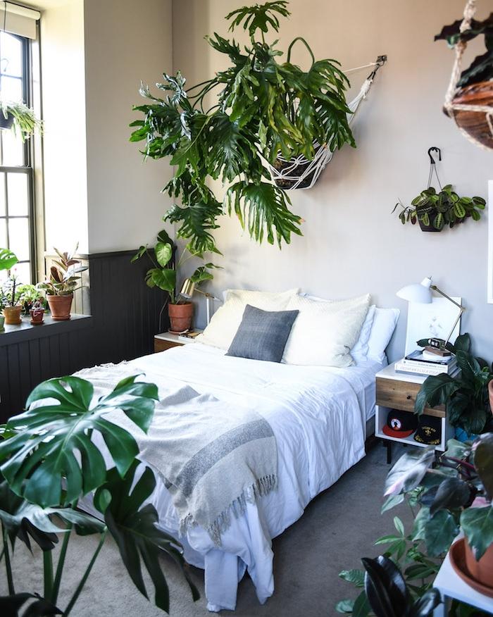 murs couleur gris perle, tapis gris, linge de lit blanc, monstera deliciosa et autres plantes vertes d intérieur, soubassement bois gris