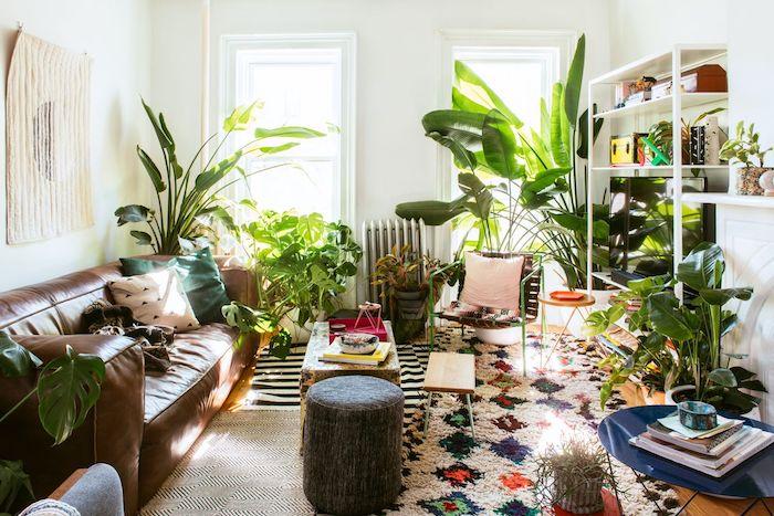 deco en grands pots de fleurs par sol, tapis zèbre et tapis moelleux coloré, table basse coffre, canapé en cuir marron, murs blancs
