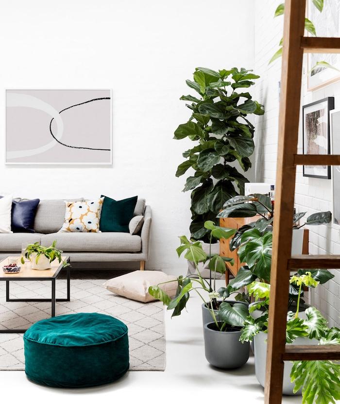 plusieurs plantes vertes d intérieurs en pots, tapis gris, pouf vert tuequoise, canapé gris et coussins de couleurs variées, murs blancs, quelle plante appartement