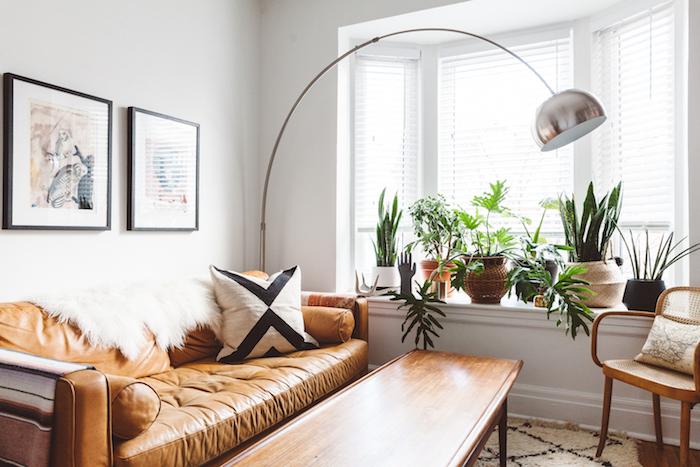 canapé cuir marron, table en bois, plusieurs plantes vertes rangées sur le rebord de la fenetre, tapis moelleux, mur de cadres