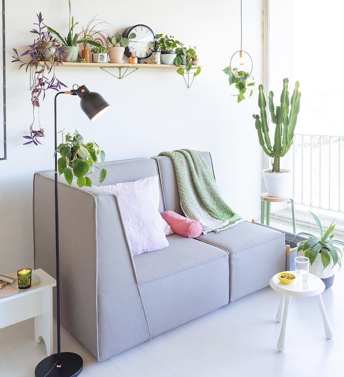 étagère bois surchargée de petits pots de succulentes, canapé gris design, plaid vert, table basse minimaliste blanche, cactus en pot