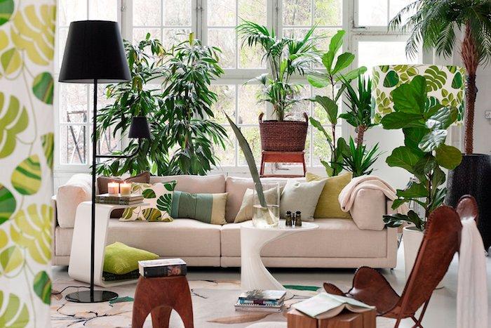lampe sur pied noir, plante verte intérieur en pot, plusieurs exemples de grosses plantes en pot, chaise en cuir, table bois, canapé rose clair, imprimé jungle
