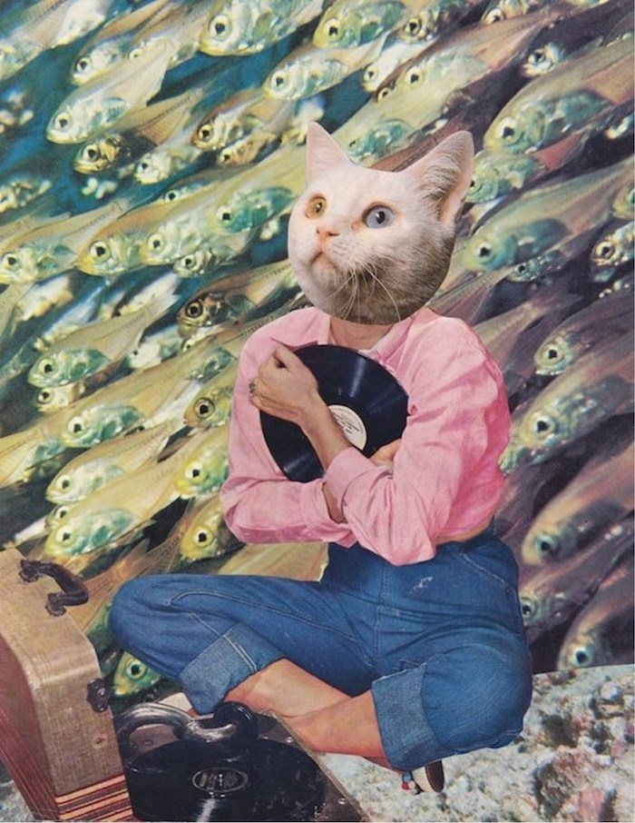Digital dessin fille swag avec tête de chat, fond d'écran cool, moderne art original, le rêve du chat, femme chemise rose et jean style annee 70