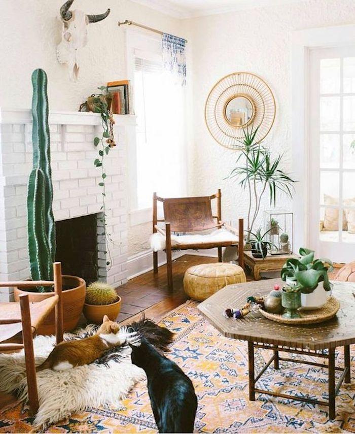 Salon bien aménagé style boheme chic, tapis berbere, deux chats, aménagement salon ethnique, cactus haut