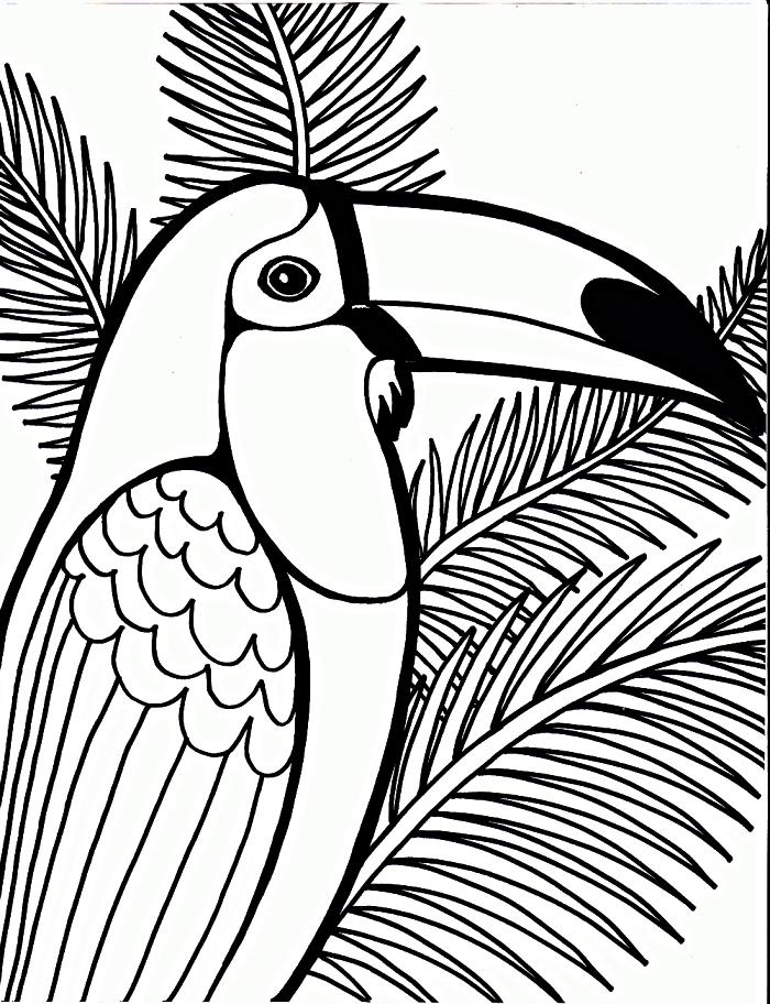 dessin à imprimer gratuitement pour coloriage maternelle, dessin à colorier perroquet perché sur une branche