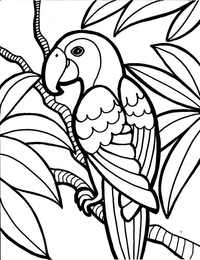 dessin de coloriage perroquet perché sur une branche d'arbre, pages à colorier gratuites sur le thème des animaux