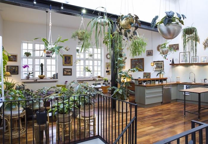 plantes sur table et pots de fleurs suspendus, cuisine en l grise ouverte sur salle à manger contemporaine, deco tropicale