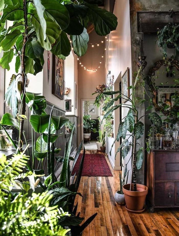 guirlande lumineuse, plantes vertes en pots par sol pour aménager un couloir long et étroit, tapis rouge, commode bois, soubassement bois gris