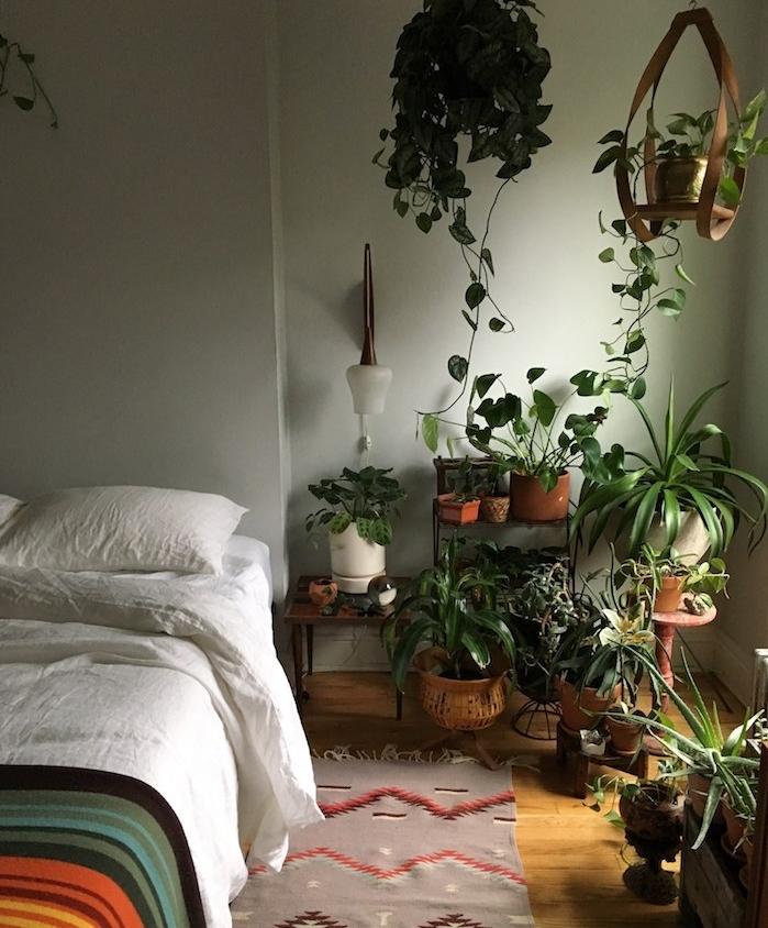 murs gris de vert dans une chambre jungle avec chevet de plusieurs végétaux, parquet bois clair, linge blanc et couverture colorée