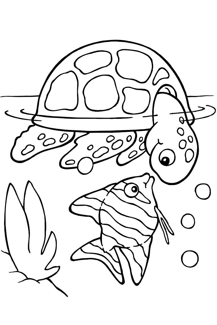 activités et jeux coloriage pour les enfants de la maternelle, dessin gratuit pour coloriage tortue et poisson