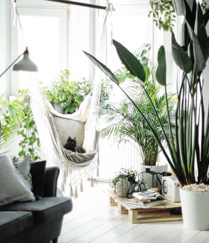 balancelle d interieur syle boheme scandinave, parquet bois blanchi et plusieurs végétaux pour une deco urban jungle