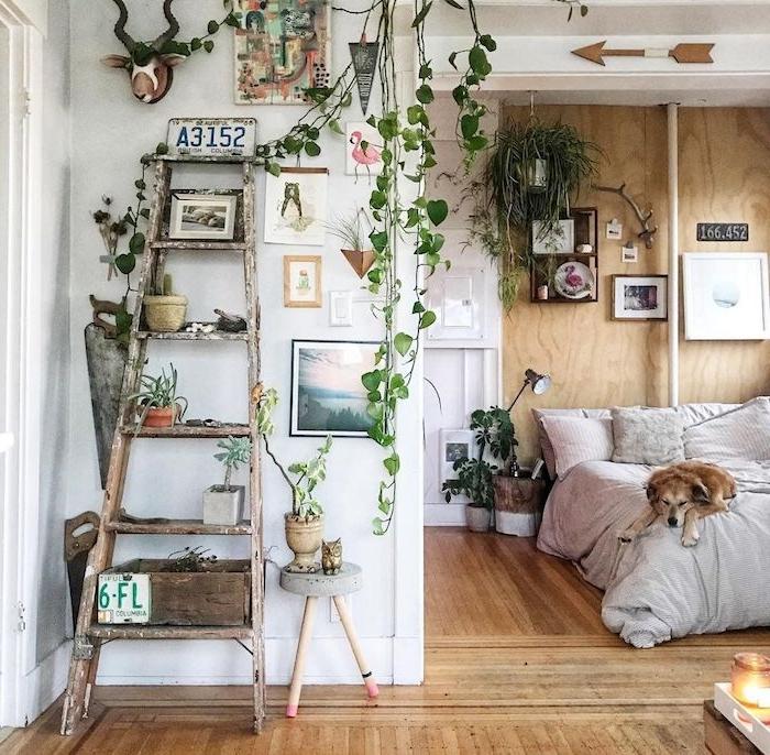 plante rampante dans une chambre boheme, echelle decorative surchargée d objets deco, lit à linge gris et rose, mur d accent bois