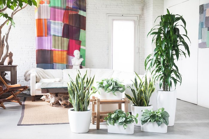 deco salon artistique à plantes d intérieur originales en pots blancs, canapé blanc, tapis tressé, mur de briques blanches et panneau décoratif coloré