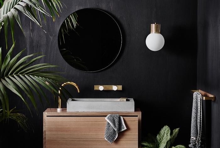 modèle de salle de bain noir et bois, idée peinture foncée pour intérieur moderne, déco jungle salle de bain aux murs noirs et meubles bois