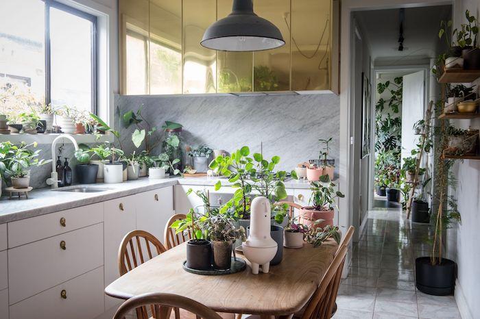 plante appartement, deco cuisine avec végétaux sur le plan de travail marbre et sur table bois, meuble haut or et meuble bas cuisine blanc