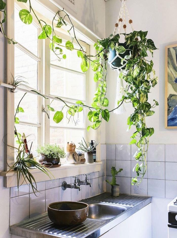 plante retombante au dessus d un évier, carrelage blanc cuisine traditionnelle, murs blancs, deco originale cuisine campagne