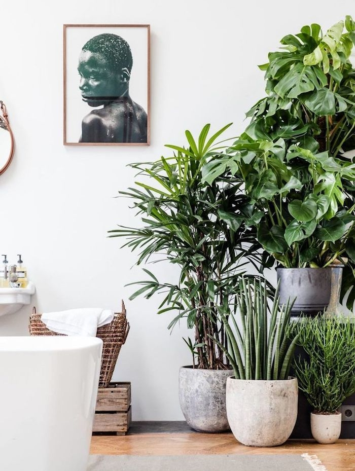salle de bain avec baignoire blanche au centre deco murale africaine, plusieurs pots de pierre avec plantes vertes à l intérieur