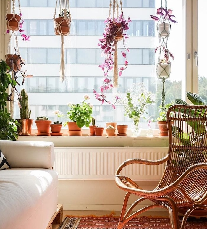 plante d intérieur succulente et et cactus en pot, pots macramé suspendus de haut, chaise cannage, canapé blanc