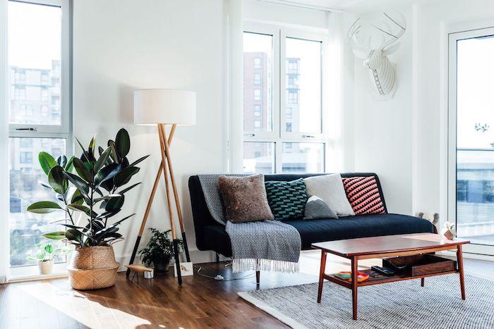 style deco exotique à la scandinave, parquet bois, canapé noir décoré de coussins, tapis gris, table basse bois, plante verte dans cache pot tressé