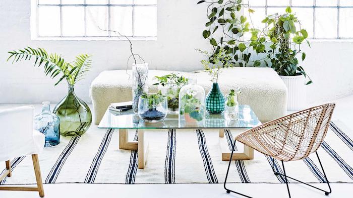 deco scandinave salon blanc et vert avec des végétaux en terrariums pour plantes, tapis noir et blanc, table bois et verre