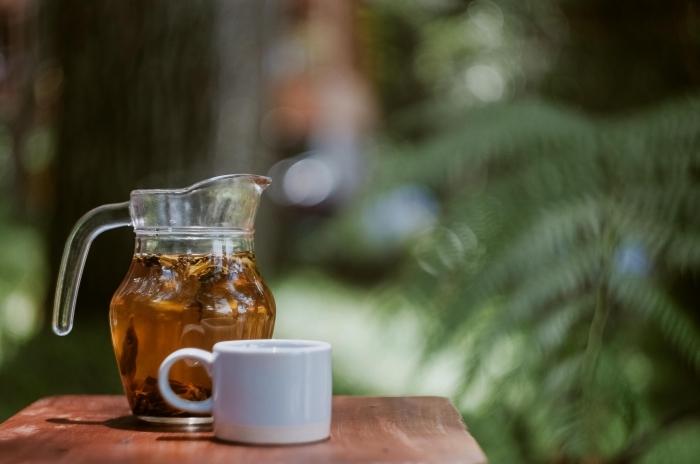 idée boisson gingembre sans sucre, recette thé glacé vert aux herbes fraîches, pichet boisson froide au thé vert