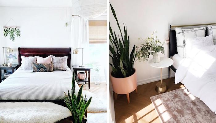 la langue de belle mère pour décorer une chambre dans style eco boheme chic, parquet bois clair, murs blancs pour touche scandinave