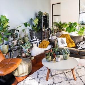 La tendance déco jungle dans le design d'intérieur ou comment mettre son intérieur au vert