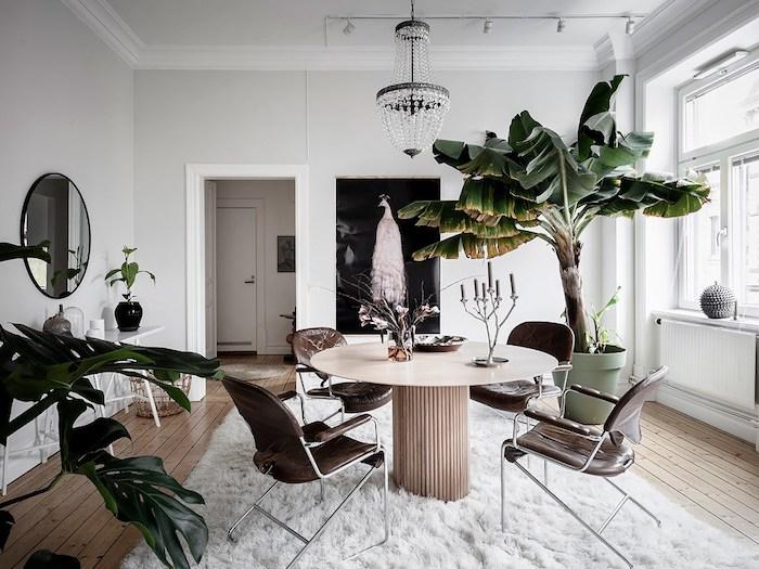 idée de table design original, chaises en cuir, tapis blanc moelleux, bananier en pot enorme, parquet bois clair, murs blancs, lustre elegant
