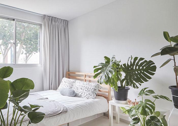 tete de lit bois de palette, linge de lit noir et blanc, plantes en pots monstera deliciosa, murs blancs, deco cocooning