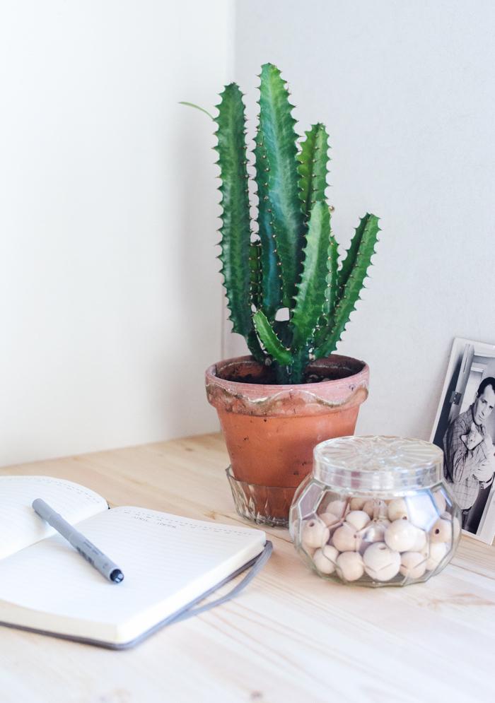 Cactus vert dans un petit pot, mignonne decoration bureau scandinave, nordique coin bureau