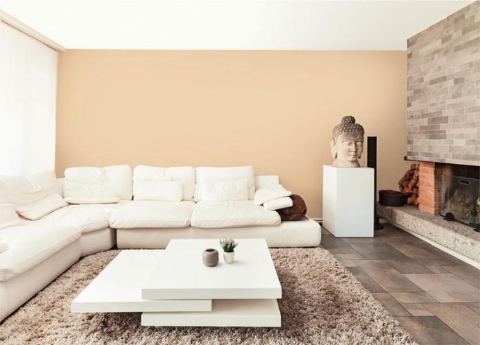 ambiance zen dans un salon spacieux et lumineux aux murs beige, déco de salon avec cheminée au carrelage sol nuances marron