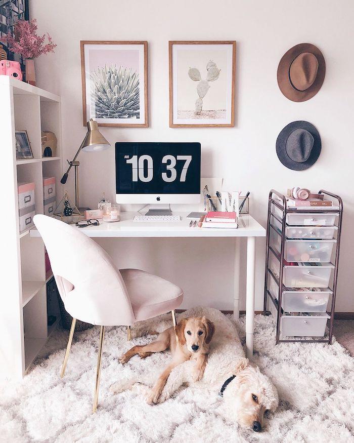 Deux tableaux avec photos de cactus, adorable chiens sur tapis blanc cosy, idée déco bureau, décoration bureau à la maison, chapeaux sur le mur pour déco