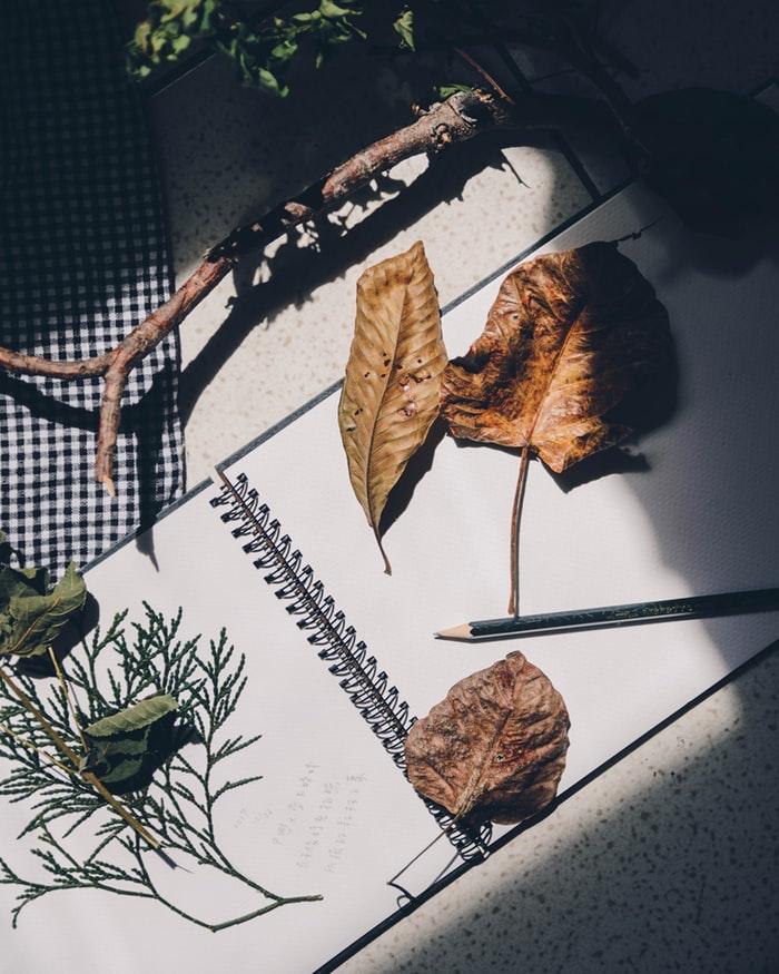Feuilles d'automne et herbes, comment décorer son scrapbooking voyage, fabriquer un carnet, album photo diy,