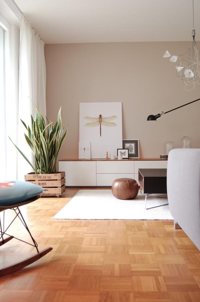 design salon moderne décoré en couleurs neutres avec plantes vertes, idée association de couleur beige dans la déco